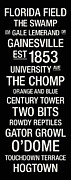 Gator Prints - Florida College Town Wall Art Print by Replay Photos