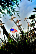 Florida Flowers Metal Prints - Florida Flag Metal Print by Emily Stauring