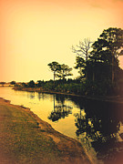 River View Metal Prints - Florida Landscape II Metal Print by Susanne Van Hulst