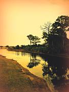Susanne Van Hulst - Florida Landscape II