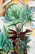 Landscape Drawings - Florida Palm by Mindy Newman