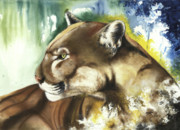 Human Mixed Media - Florida panther  by Anthony Burks