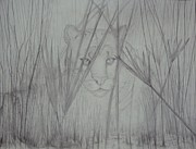 Panther Drawings - Florida Panther- Watching by PJ Jackson