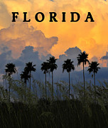 Storm Digital Art Metal Prints - Florida Poster Metal Print by David Lee Thompson