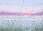Sunset Framed Prints Drawings Framed Prints - Florida Sunset Framed Print by John Edebohls