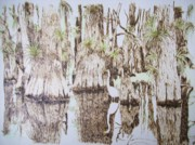 Original Watercolor Pyrography - Florida Wildlife Pyrograpgic Portrait by Pigatopia by Shannon Ivins