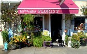Flowers Flowers And Flowers Photos - Florist 118 by Joyce StJames