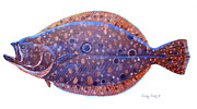 Grouper Prints - Flounder Print by Carey Chen