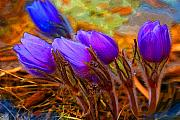 Pasque Flower Digital Art - Flourescent Flowers by Heather Coen