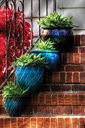 4 Photos - Flower - Plant - Four Blue Pots  by Mike Savad