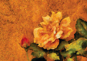 Stucco Prints - Flower - Rose - My little Buddy Print by Mike Savad
