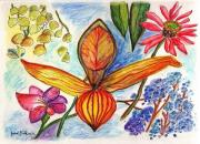 Gardening Drawings Originals - Flower 73 by Julie Richman