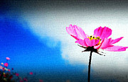 Night Lamp Drawings Prints - Flower and Sky Print by Sanjay Avasarala