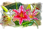 Artwork Flowers Prints - Flower Arrangement Print by Chuck Staley