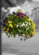 In A Forest Posters - Flower Basket Poster by Svetlana Sewell