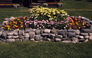 Wasilla Posters - Flower Bed and Rock Poster by Sally Weigand