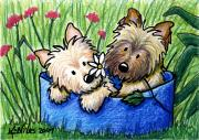 Cairn Terrier Prints - Flower Bed Cairns Print by Kim Niles