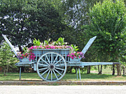 Beach Fence Digital Art Posters - Flower Cart Normandy France Poster by Joseph Hendrix
