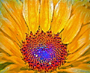 Colorful Sunflower Framed Prints - Flower Child - Flower Power Framed Print by Gwyn Newcombe