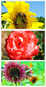 Susan Leggett Art - Flower Collage Part One by Susan Leggett