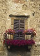 Italian Tuscan Prints - Flower Covered Balcony Print by Axiom Photographic