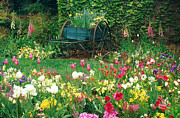 Assorted Posters - Flower Garden and Wagon Poster by Adam Jones and Photo Researchers