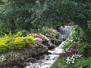 Linda Bennett Art - Flower garden with Waterfall by Linda Bennett