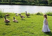 Wild Geese Posters - Flower girl Poster by Deborah Cummins