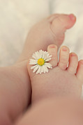 New Life Framed Prints - Flower In Baby Toes. Framed Print by Augenwerke-Fotografie / Nadine Grimm