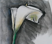 Los Angeles Pastels Metal Prints - Flower in Bloom - Los Angeles Metal Print by Robert Birkenes