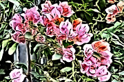 Flower Painting 0003 Print by Metro DC Photography