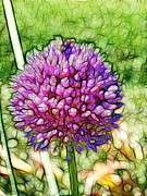 Flower Digital Art Prints - Flower Poof Print by Methune Hively