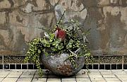 Installation Art Framed Prints - Flower Pot Framed Print by Viktor Savchenko