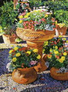 Patios Posters - Flower Pots in Sunlight Poster by David Lloyd Glover