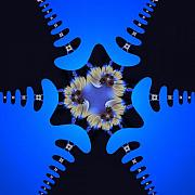 Fractal Patterns - Flower Power 05 by Edan Chapman