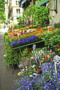 Sell Metal Prints - Flower stand in Paris Metal Print by Elena Elisseeva