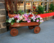 Toy Store Photo Metal Prints - Flower Wagon Metal Print by Perry Webster