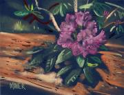 Pastel Pastels Originals - Flowering Rhododendron by Donald Maier