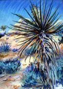 Desert Pastels Prints - Flowering Yucca Print by Donald Maier