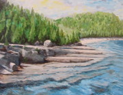 Ontario Paintings - Flowerpot Island Beach by Anda Kett