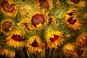 Golden Flowers Metal Prints - Flowers - Sunflowers - Youre my only sunshine Metal Print by Mike Savad