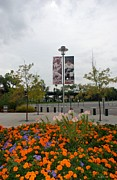 Ball Parks Framed Prints - Flowers At Citi Field Framed Print by Rob Hans