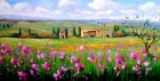 Tuscan Sunset Paintings - Flowers field by Bruno Chirici