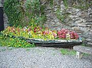 Stone Bench Prints - Flowers Floating Print by Kelly Mezzapelle
