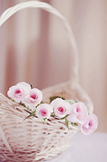 Basket Photos - Flowers In Basket by This Wonderful Life