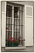 Window Box Prints - Flowers in Paris windowbox Print by Sheila Smart