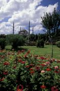 Blue Mosque Posters - Flowers In Sultanahmet Square Poster by Richard Nowitz