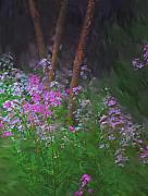 Digital Photography - Flowers in the woods by David Lane