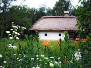 Tranquil Pyrography Posters - Flowers near rural house Poster by Aleksandr Volkov
