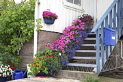 Covered Porch Posters - Flowers On Porch Stairs Poster by Bjorn Svensson